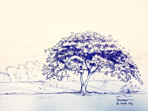 sketch-03
