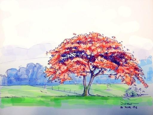 sketch-04
