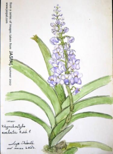 floweronpostcard-1-1