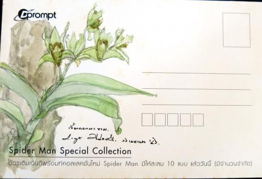 floweronpostcard-1-4