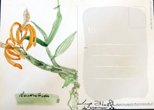 floweronpostcard-1-5