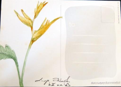 floweronpostcard-1-8
