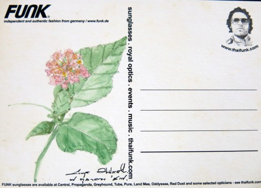 floweronpostcard-1-9