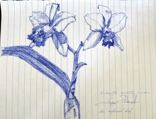 floweronpostcard-2-11