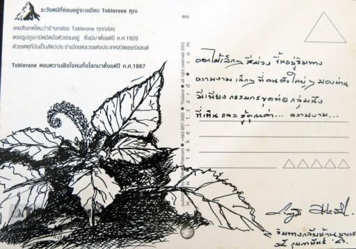 floweronpostcard-2-3