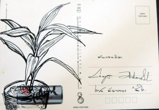 floweronpostcard-2-6