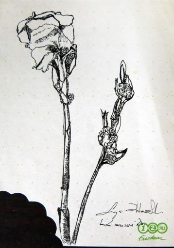 floweronpostcard-2-9