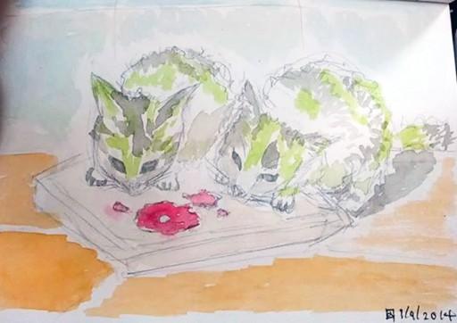 ตัวซ้ายชื่อโบตั๋น ตัวขวาชื่อศรีนวล เป็นลูกแมวเด็กที่เก็บมาเลี้ยงไว้ ก่อนที่ทางเจ้าของสถานที่จะเอาไปทิ้ง ภาพนี้วาดไว้เป็นที่ระลึกวันย้ายเข้าบ้าน (ปัจจุบันยังเลี้ยงอยู่)